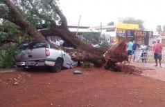 Veículo atingido por árvore ficou completamente destruído em Dourados (Foto: 94FM)