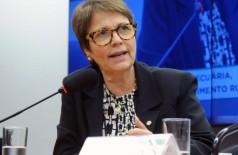 A deputada Tereza Cristina (DEM-MS), que assumirá o ministério da Agricultura em 2019 (Foto: Luis Macedo/Câmara dos Deputados)
