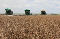 MS tem 12 cidades entre os maiores produtores do agronegócio brasileiro (Foto: reprodução)