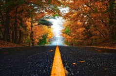 O outono começa nesta quarta-feira (20), às 17h58 (horário de MS) Foto: Pixabay