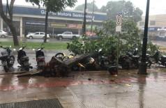 Árvore caiu em cima de motos durante vendaval em Dourados - Foto: divulgação/94FM
