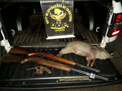 Armas e animal morto estavam em picape conduzida por jovem (Foto: Divulgação/DOF)