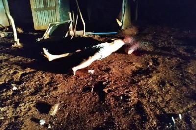 Mauri Almeida Gonçalves não resistiu aos ferimentos e morreu. Foto: divulgação