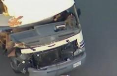 Com dois cães no colo, mulher protagoniza 'fuga de cinema' e destrói trailer; assista (Foto: reprodução/Twitter)