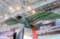 Drone coruja Foto: Reprodução/East2west News
