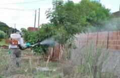 Dengue teve cinco novas confirmações por dia em uma semana (Foto: A. Frota)