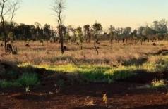 Momento que os indígenas invadiram a propriedade rural - Foto: Reprodução