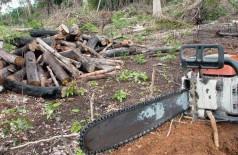 Exoneração vem após divulgação de dados sobre desmatamento (Foto: Wilson Dias/Agência Brasil)