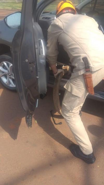 Pedaço da tampa do bueiro perfurou assoalho de veículo (Foto: Reprodução)