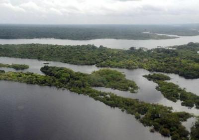 Floresta Amazônica - Valter Campanato/Agência Brasil