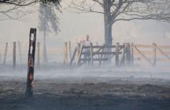 Vegetação foi destruída pelo fogo - Foto: Álvaro Rezende/Correio do Estado