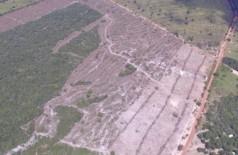 Desmatamento em MS corresponde a 20,7% do registrado em 15 estados (Foto: Antonio Roberto)