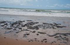 Mancha de óleo atinge o litoral do Nordeste - Adema/Governo de Sergipe