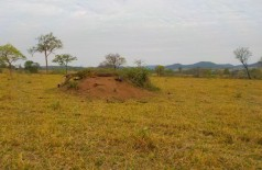Imagem de satélite flagra desmatamento - Foto: PMA