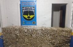 Droga apreendida pela polícia - Foto: divulgação/PMR