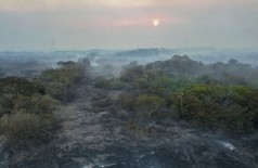 Área destruída pelo fogo no Pantanal, entre Miranda e Corumbá, de domingo a quinta-feira - Fotos: Chico Ribeiro