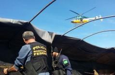 PRF revelou aumento nas apreensões de drogas em Mato Grosso do Sul (Foto: Sidnei Bronka/Arquivo)