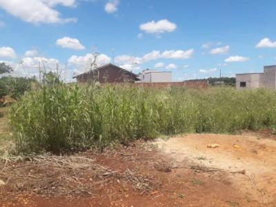 Mato alto em terreno baldio em bairro de Dourados - Foto: divulgação/ouvinte 94FM)