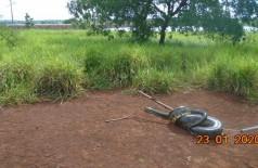 Depois de algumas horas, a sucuri foi capturada e solta em seu habitat natural— Foto: PMA/Divulgação