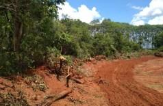 O autuado realizou o desmate de 2,34 hectares de Mata Atlântica