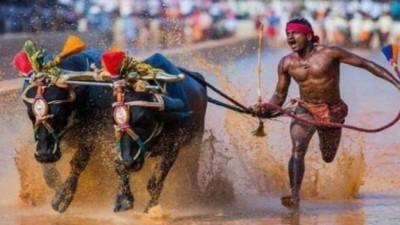 Srinivasa Gowda 'bate recorde' de Usain Bolt Foto: Reprodução/Twitter(P Muralidhar Rao)