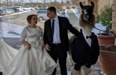 Irmão da noiva vai ao casamento acompanhado de lhama (Foto: Reprodução/Reddit)