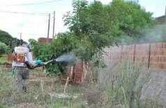 Dourados já notificou mais de 500 casos de dengue neste ano (Foto: A. Frota)