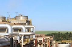 O cronograma de moagem da cana-de-açúcar e linha de produção seguem sem alteração em Mato Grosso do Sul (Foto: Biosul/Divulgação)