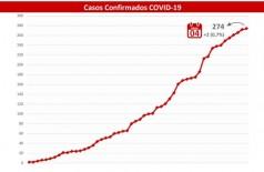 Gráfico mostra aumento de casos confirmados em MS - Foto: reprodução
