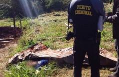 O corpo foi encontrado embaixo de um colchão - Foto: Robertinho/Maracaju