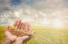 Ministério lança política nacional de bioinsumos na agricultura