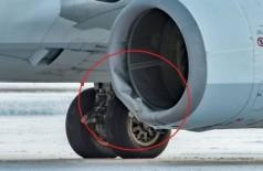 O biólogo local Robert Johnson registrou a avaria na aeronave que atropelou urso no Alasca - Foto: Reprodução/Facebook(Robert E-bear Johnson)