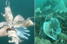 Máscaras recolhidas no mar - Foto: Reprodução