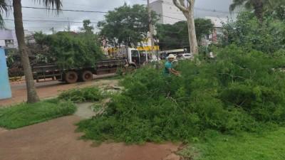Equipes da Secretaria de Serviços Urbanos fizeram uma limpeza preventiva na área central de Dourados - Foto: Divulgação