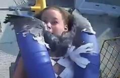 Kiley é atropelada por gaivota em brinquedo de parque nos EUA Foto: Reprodução/Twitter