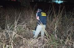 Indígena é encontrada morta às margens da BR-163