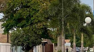 Polícia Federal faz operação na fronteira de MS