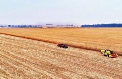 Holding rural tem maior capacidade de negociar no momento de compra de insumos agrícolas, maquinários e outros itens necessários ao crescimento do negócio (Foto: Saul Schramm/Divulgação)