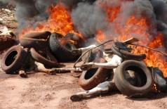 Moradores transformam estrada em lixão e jogam até animais mortos