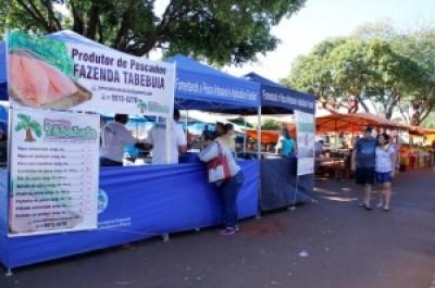 Venda de peixe na feira da Rua Cuiabá começou há um mês e agora feirantes vão comercializar também cortes e em... (Chico Leite)