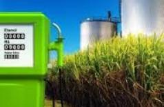 Mais vantajoso ao abastecer, consumo de etanol segue em alta no MS