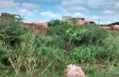 Terreno abandonado no Parque dos Coqueiros é tomado por mato e lixo